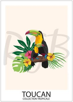 "Image search result for ""toucan drawing exotic flowers and cit . Flower Painting, Animal Art, Toucan Art, Poster Prints, Drawings, Colorful Paintings, Illustration Art, Toucan Illustration, Animal Paintings"