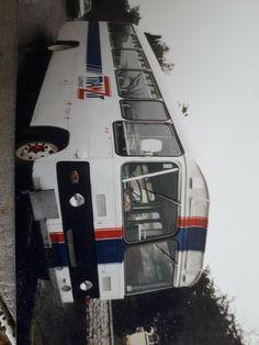 Bus Coach, Buses, New Zealand, Hong Kong, Transportation, History, Historia, History Activities