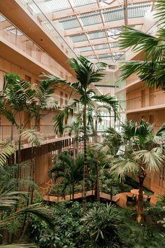 Biophilic Architecture, Green Architecture, Architecture Design, Interior Design Studio, Interior Design Living Room, Interior Styling, Nachhaltiges Design, Office Plants, Interior Garden