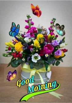 Good Morning Sunday Images, Good Morning Msg, Morning Quotes Images, Good Morning Greetings, Good Morning Beautiful Flowers, Good Morning Beautiful Images, Beautiful Pictures, Good Night Friends, Good Night Quotes