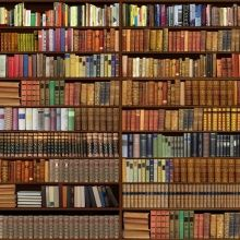 The 63 Best Bookcase Wallpaper Images On Pinterest