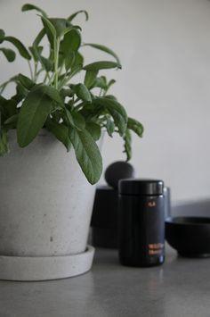 Enkel og vakker oppdatering av det hvite kjøkkenet med kalkmaling.