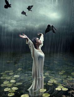 ✯ The Taste of Rain .:☆:. Artist Julia Rohwedder ✯
