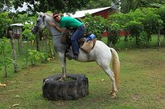 Costa Rica - Horse Whisperers in Jaco