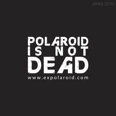 VISUEL POLA - expolaroid - unpeuflou
