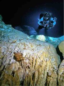 Ice age era bones recovered from underwater caves in Mexico #Geology #GeologyPage