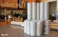 tons of ideas other uses for t.p. rolls!