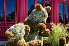 Topiary Pandas