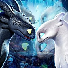 Toothless Drawing, Toothless And Stitch, Hiccup And Toothless, Httyd, Animals And Pets, Cute Animals, Fantasy Star, Dragon Movies, Dragon Trainer