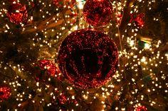 New Post rustic christmas lights wallpaper Christmas Lights Wallpaper, Christmas Lights Background, White Christmas Lights, Xmas Lights, Outdoor Christmas, Little Christmas, Rustic Christmas, Christmas Time, Merry Christmas