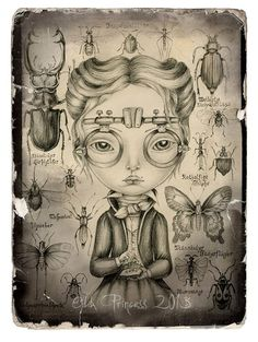 Entomologist art drawing print x by oddprinc Art And Illustration, Illustrations, Fine Art Drawing, Art Drawings, Mehndi, Historia Natural, You Draw, Pop Surrealism, Jolie Photo