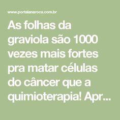 As folhas da graviola são 1000 vezes mais fortes pra matar células do câncer que a quimioterapia! Aprenda a usar - Lá na Roça