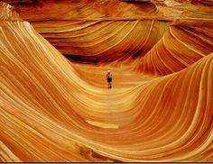 Arizona the wave
