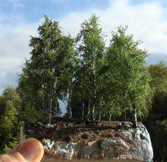 Bild Miniature Trees, Miniature Houses, Ho Trains, Model Trains, Model Tree, Mini Craft, Gnome Garden, Train Layouts, Farm Gardens