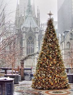 Christmas in Manhattan. St. Patrick's Cathedral NYC--USA