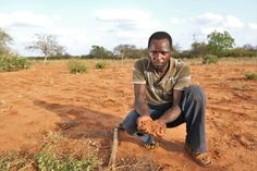 #Farming in Kitui, Kenya can be difficult. When the rains fail and #drought hits, Peter's soils run through his hands like dust. That's why Farm Africa is training farmers in soil conservation techniques.