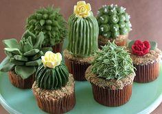 Cupcake suculentas