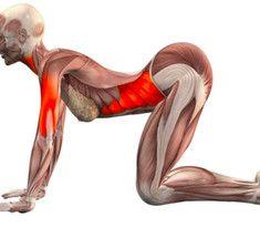 Эти упражнения избавляют от застоя в органах малого таза