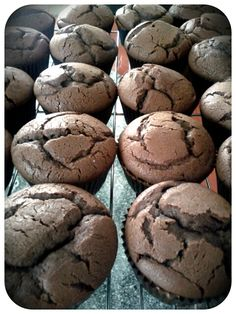 My Ina Garten Chocolate Cupcakes waiting to be iced.