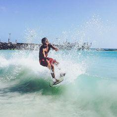 surfing sal