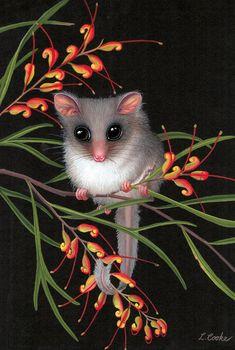 """""""Australian Feathertail Glider on Grevillea Flowers"""" by Lyn Cooke Australian Wildflowers, Australian Native Flowers, Australian Birds, Australian Garden, Reptiles, Mammals, Australian Painting, Australia Animals, Arte Floral"""