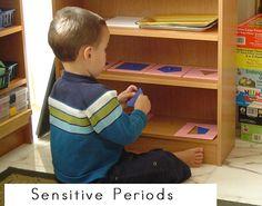 Sensitive Periods in Childhood Development Montessori Theory, Montessori Education, Montessori Materials, Maria Montessori, Montessori Toddler, Joy And Happiness, Reggio, Bedtime, Kids Learning