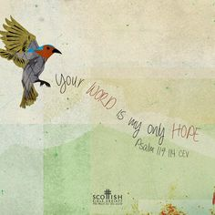 REDE MISSIONÁRIA: YOUR WORD IS MY ONLY HOPE (PSALM 119:114)
