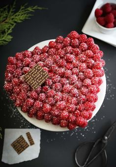 Sprinkle Bakes: Raspberry-Covered Devil's Food Cake