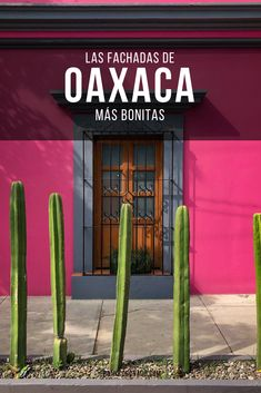 Mexican Restaurant Decor, Mexican Bar, Mexican Home Decor, Mexican Style, Backyard, Patio, Mexico Travel, Facade, Places To Visit
