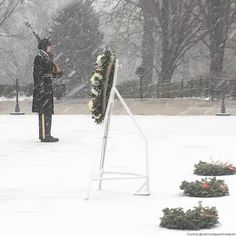 The snowstorm bearing down on the nation's capital is not stopping the small group of soldiers who continually stand guard at the Tomb of the Unknowns. This photo was shared by @usarmyoldguard. Tap the link on our profile for a look at the best photos and videos from #Blizzard2016. #blizzard #snow #snowstorm #washingtondc #army #soldier #soldiers #tomboftheunknownsoldier #tomboftheunknown #tomboftheunknowns #abc7news by abc7newsbayarea
