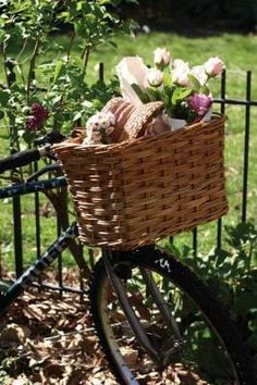 Another bike basket :)