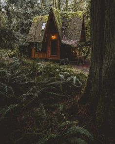 The cottage I live in in my dreams with my cute husband yes I know you can see this title Diy Makeup diy makeup