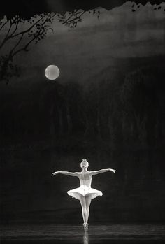 Moonlight Ballet More