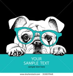 The poster of portrait bulldog with glasses. Vector illustration. - stock vector