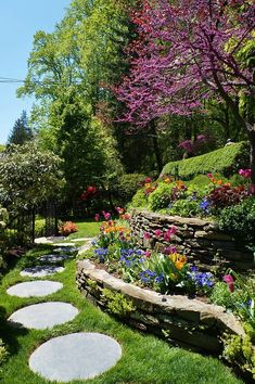 Steinterrasse mit Cercis und runden Trittsteinen Stone terrace with cercis and round stepping stones Terraced Landscaping, Front Yard Landscaping, Landscaping Ideas, Outdoor Landscaping, Inexpensive Landscaping, Terrace Garden, Indoor Garden, Garden Beds, Terrace Ideas