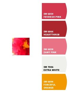 another of my floral photos! Paint colors from Chip It! by Sherwin-Williams