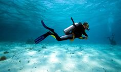 Earn entry-level PADI certification after eight-hours of classroom time, five confined water dives, and four open water dives