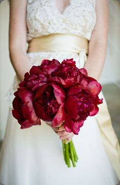 Darker red peonies.