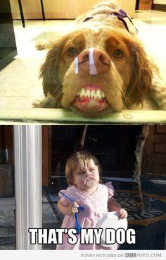 Funny dog...funny little girl. *