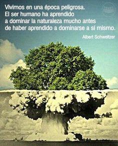 buena reflexión de Albert Schweitzer
