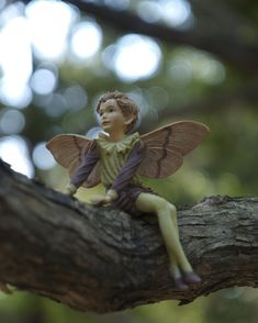 The camping fairy for Karli & Bailey.