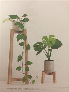 diy? wood plant stands Wood Plant Stand, Plant Stands, Potted Plants, Indoor Plants, Indoor Garden, Plant Shelves, Plant Decor, Pinterest Diy, Diy Wood