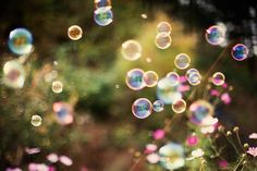 storybook-magic:    bubble bubble (by fotografer_san)