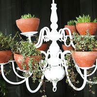 Plant chandelier! Perfect for a small herb garden.