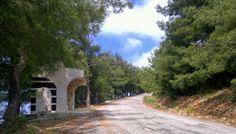 Road to Beshrage. Syrian coast.  https://www.facebook.com/pages/Our-Village-القطيلبية/179080495435722?ref=stream