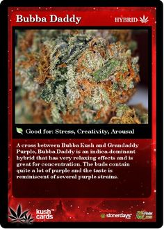 Kush card Bubba D Cannabis News, Medical Cannabis, Cannabis Oil, Cannabis Edibles, Buy Cannabis Online, Buy Weed Online, Ganja, Weed Strains, Weed Pictures