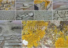 Collage  Salzgärten -  Guerande, Bretagne, Frakreich 2011  Postkarte