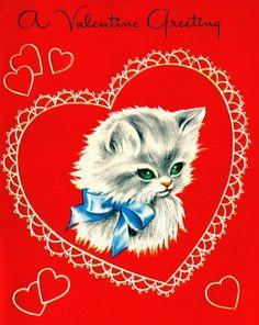 Valentine Greeting cat