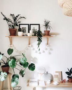 Decorar con monsteras y plantas