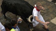 Властите в Памплона плашат с глоба от поне 1500 евро за селфи с бик - Първи Български Зоопортал